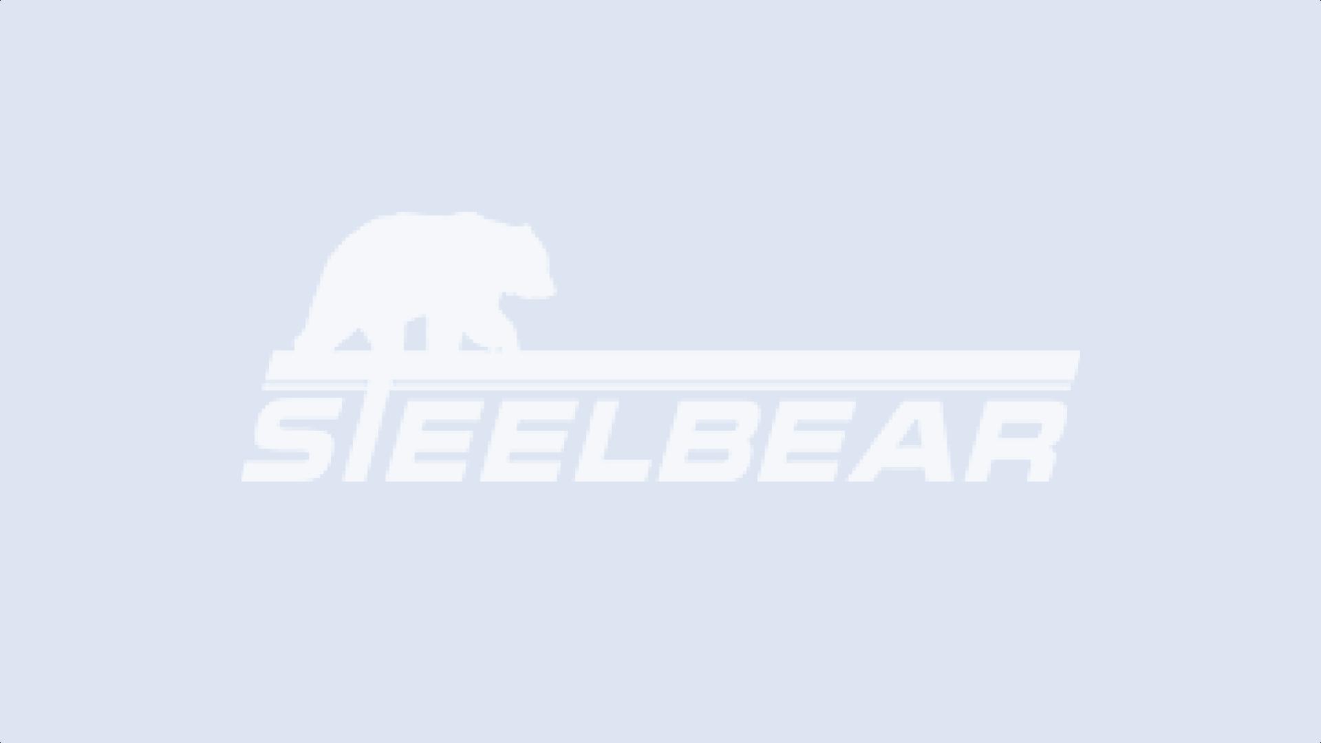 STEELBEAR продолжает дарить подарки